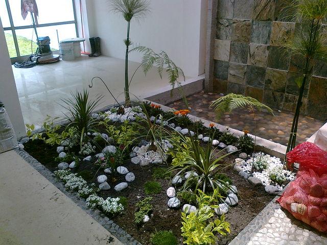 Esquinero2 jardineria xochimilco for Jardineros en xochimilco