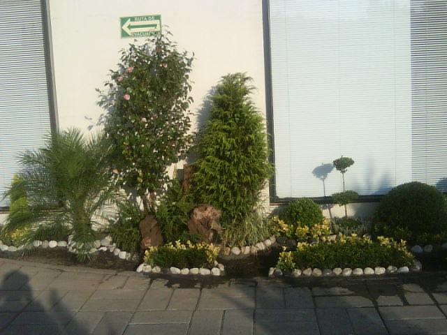Esquinero d centro jardineria xochimilco Jardineria xochimilco