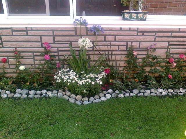 Esquinero de rosas jardineria xochimilco Jardineria xochimilco