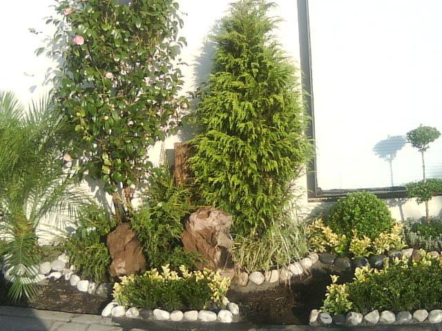 Esquinero d centro jardineria xochimilco for Jardin xochimilco