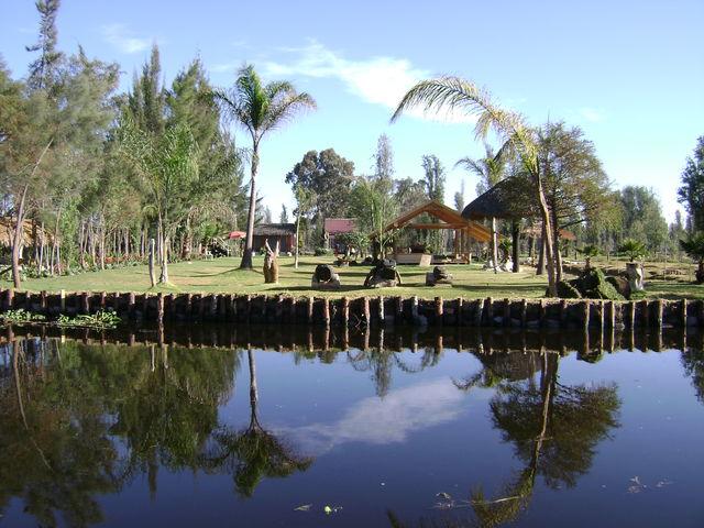 Decoraciones en jardineria jardineria xochimilco for Jardineros en xochimilco