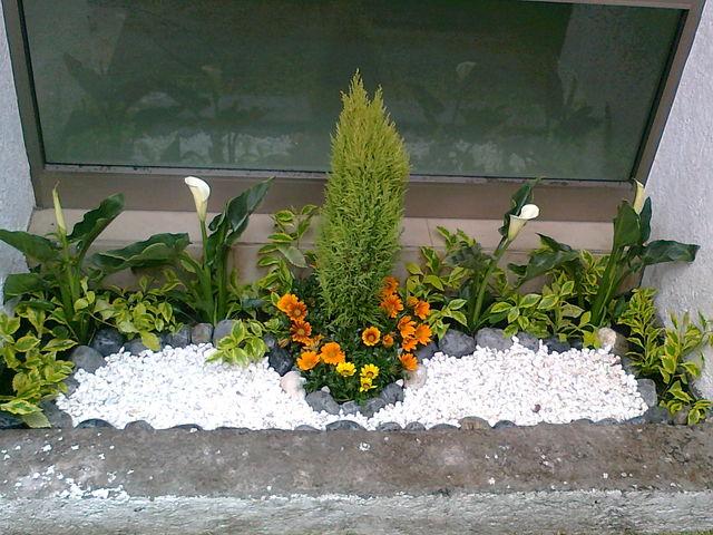 Esquinero jardineria xochimilco for Jardineros en xochimilco