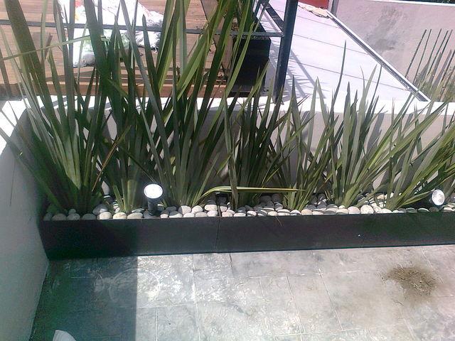 Macetas de fornios jardineria xochimilco for Diseno de interiores xochimilco