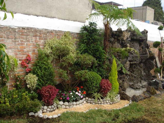 Sin nombre jardineria xochimilco for Jardin xochimilco